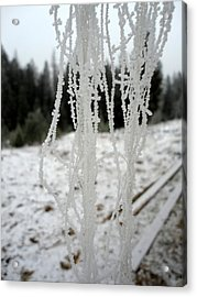 A Tail And Ice Acrylic Print
