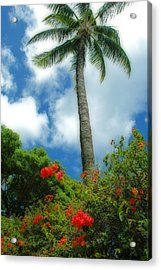 A Touch Of The Tropics Acrylic Print by Lynn Bauer