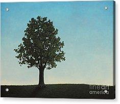 A Tree On A Hill Acrylic Print by Dan Lockaby