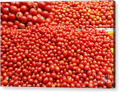 A Variety Of Fresh Tomatoes - 5d17833 Acrylic Print by Wingsdomain Art and Photography