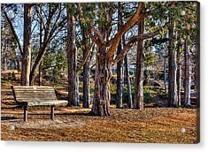 A Walk In The Park Acrylic Print by Doug Long