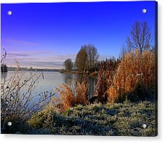 A Winter Scene Acrylic Print by Cat Shatwell