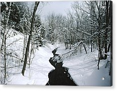 A Winter View Of Rush Brook Acrylic Print by James P. Blair