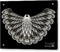 A Wise Old Owl Acrylic Print by Andee Design