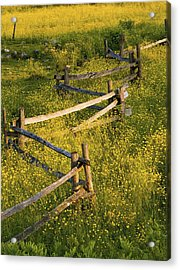 A Wooden Rail Fence Surrounded By Acrylic Print by David Chapman