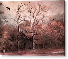 Abandoned Haunted Barn With Crows Acrylic Print by Kathy Fornal