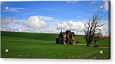 Abandoned House On Green Pasture Acrylic Print by Steve McKinzie