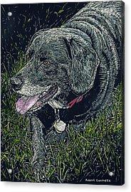 Abbe The Dog Acrylic Print by Robert Goudreau