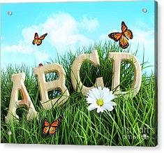 Abc Letters With Daisy In Grass Acrylic Print by Sandra Cunningham