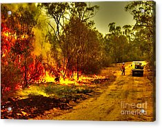 Ablaze Acrylic Print by Joanne Kocwin