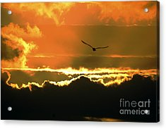 Above The Clouds Acrylic Print by Johanne Peale