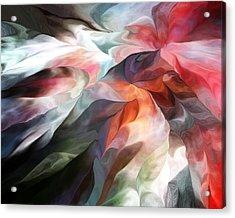 Abstract 062612 Acrylic Print by David Lane