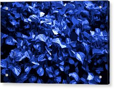 Acrylic Print featuring the digital art Abstract Blue by Serene Maisey