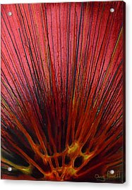 Abstract Flash 1.1 Acrylic Print