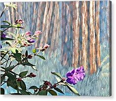 Acrylic Print featuring the photograph Abstract Floral by Jo Sheehan