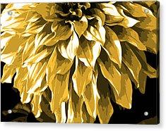 Abstract Flower 4 Acrylic Print