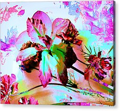 Abstract Flower Number Five Acrylic Print by Doris Wood