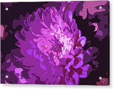 Abstract Flowers 3 Acrylic Print