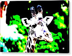 Abstract Giraffe Acrylic Print