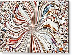 Abstract Seashells Acrylic Print by Aimee L Maher Photography and Art Visit ALMGallerydotcom
