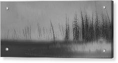 Abstruse Acrylic Print