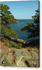 Acrylic Print featuring the photograph Acadia In Maine by Rick Frost