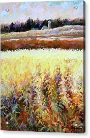 Across The Cornfield Acrylic Print
