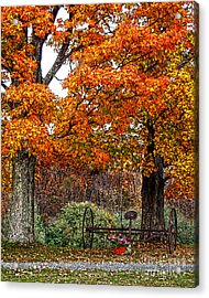Adirondack Autumn Beauty Acrylic Print by Diane E Berry