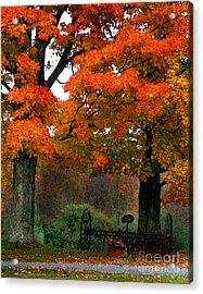 Adirondack Palette Acrylic Print
