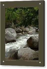 Adirondack Stream-iii Acrylic Print by Patricia Overmoyer