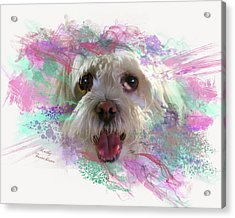 Acrylic Print featuring the digital art Adopt Me by Kathy Tarochione