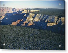 Aerial View Of Kaibab Acrylic Print by Norbert Rosing