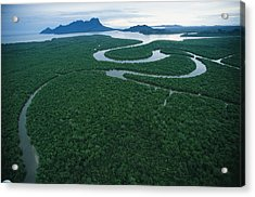 Aerial View Of The Salak River. Mount Acrylic Print by Tim Laman