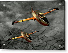 Aermacchi In Flight Acrylic Print by Steven Agius