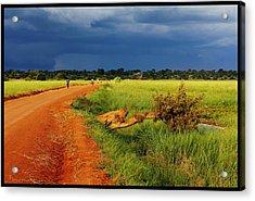African Landscape Acrylic Print by Marian Barbu