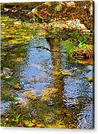 After Monet Or Reflections In The Stream Acrylic Print