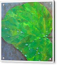 After The Rain Acrylic Print by Thomas Dreesen