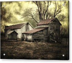After The Storm Acrylic Print by Mary Timman