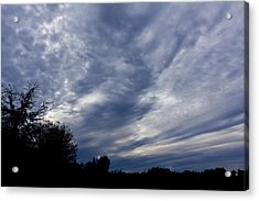 Afternoon Blues Acrylic Print by Nicholas Evans
