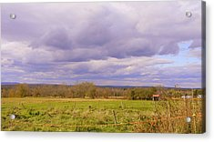 Afternoon In The Country Acrylic Print by Katina Cote