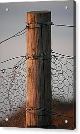 Afternoon Post Acrylic Print by Dickon Thompson