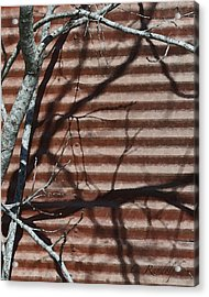 Acrylic Print featuring the photograph Against A Wall by Cheri Randolph