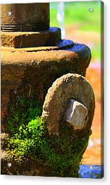 Aged Acrylic Print by Inspired Arts