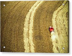 Agricultural Harvesting Maize Acrylic Print by Marcos Alves