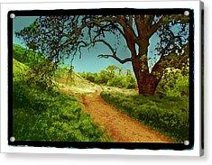 Ahmanson Ranch Calabasas 2 Acrylic Print by Noah Brooks