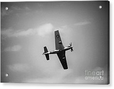 Air Show 1 Acrylic Print by Darcy Evans