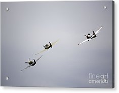 Air Show 13 Acrylic Print by Darcy Evans