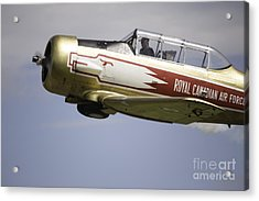 Air Show 7 Acrylic Print by Darcy Evans