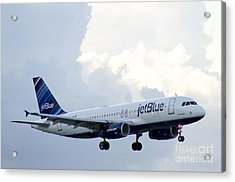 Airplane Acrylic Print by Blink Images