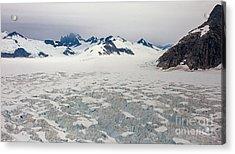 Alaska Frontier Acrylic Print by Mike Reid